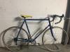 bicicolnago2.png