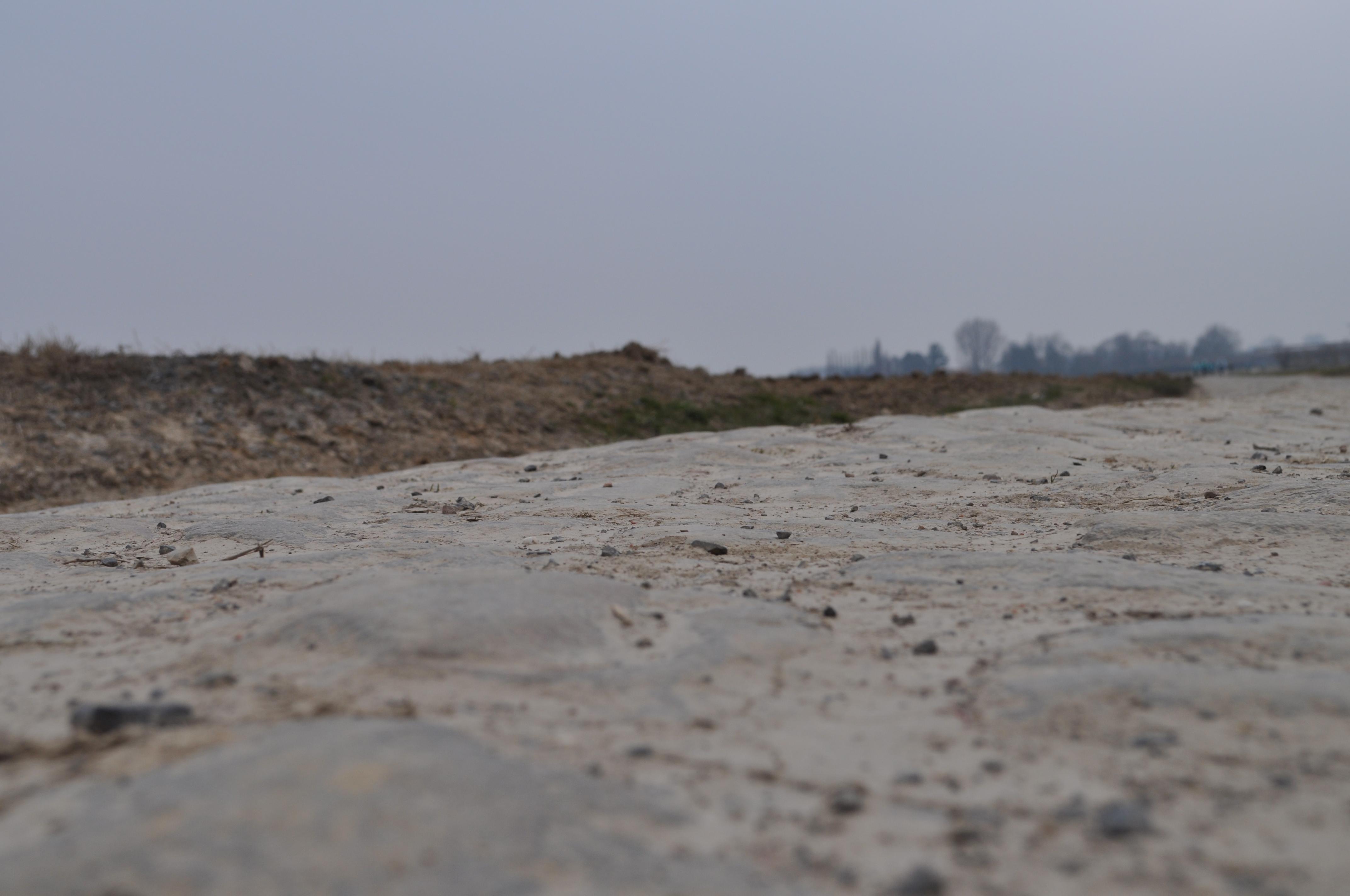 Sul pavé della Roubaix con la nuova Bianchi Infinito CV