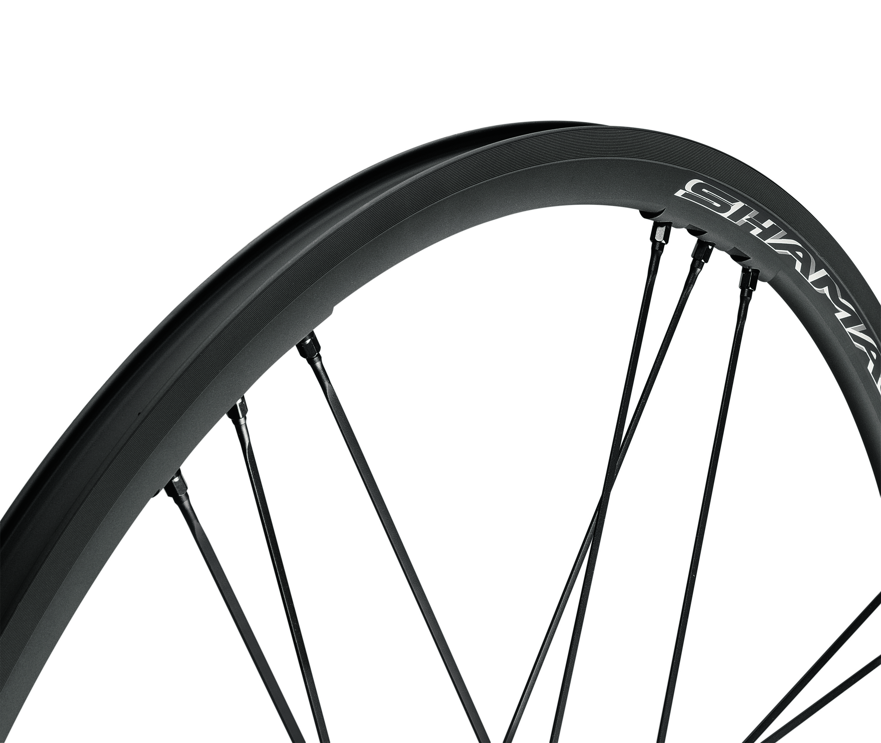 Nuove ruote Campagnolo Shamal Mille C17